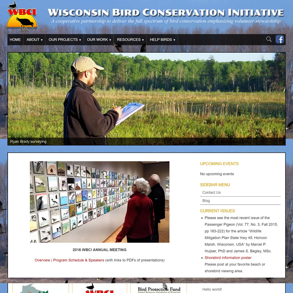 Wisconsin Bird Conservation Initiative
